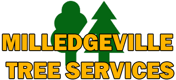 Milledgeville Tree Service